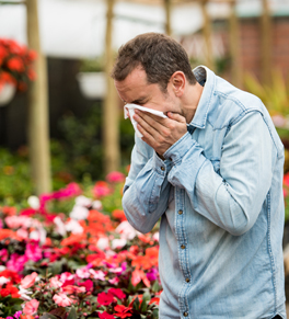 man sneezing near flowers during springtime allergy season