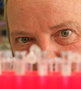 dr. edward nelson looking at test tubes