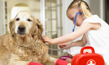 girl with first-aid kit treating dog