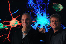 Neurobiologists Frank LaFerla and Mathew Blurton-Jones study how stem cells restore memory in Alzheimer's disease.