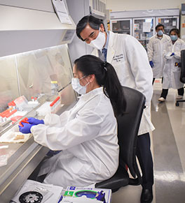 UCI Health pathology chief Dr. Edwin S. Monuki consults with laboratory scientist Jeanie Garcia as she processes a COVID-19 test sample.